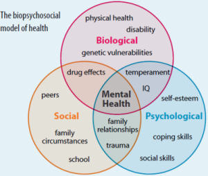 Biological, social and psychological Venn diagram with mental health a the the centre.